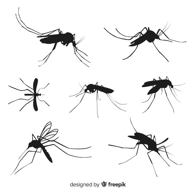 Ensemble De Sept Silhouettes De Moustiques Vecteur gratuit