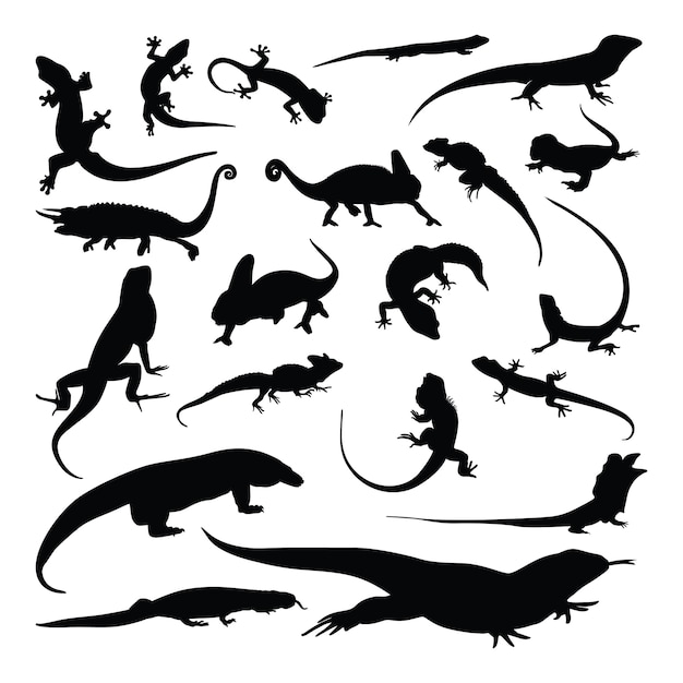 Ensemble de silhouette gecko lézard caméléon Vecteur Premium