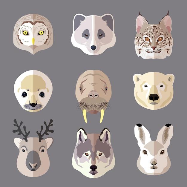 Ensemble de têtes d'animaux. loup, ours polaire, cerf, lapin, hibou, chat sauvage, phoque Vecteur gratuit