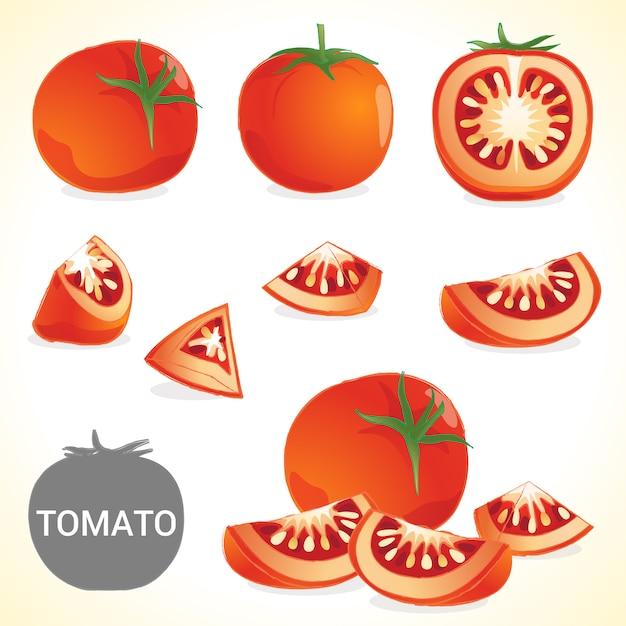 Ensemble De Tomates Au Format Vectoriel De Différents Styles Vecteur Premium
