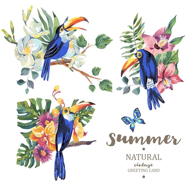 Ensemble de toucan d'été vintage avec des papillons et des fleurs Vecteur Premium