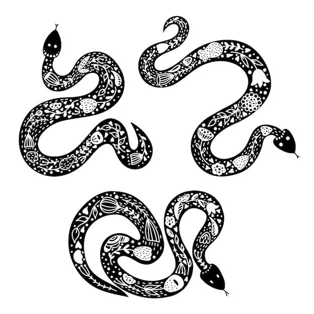 Ensemble de trois serpents. Vecteur Premium