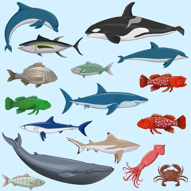 Ensemble de vecteur d'animaux marins Vecteur Premium