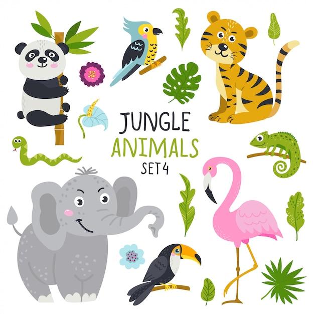 Ensemble de vecteur d'animaux mignons de la jungle Vecteur Premium