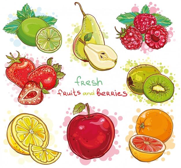 Ensemble De Vecteur D'illustration Avec Des Fruits Frais Et Des Baies. Pomme, Kiwi, Fraise, Framboise, Poire, Citron, Citron Vert, Orange, Pamplemousse, Menthe. Vecteur Premium