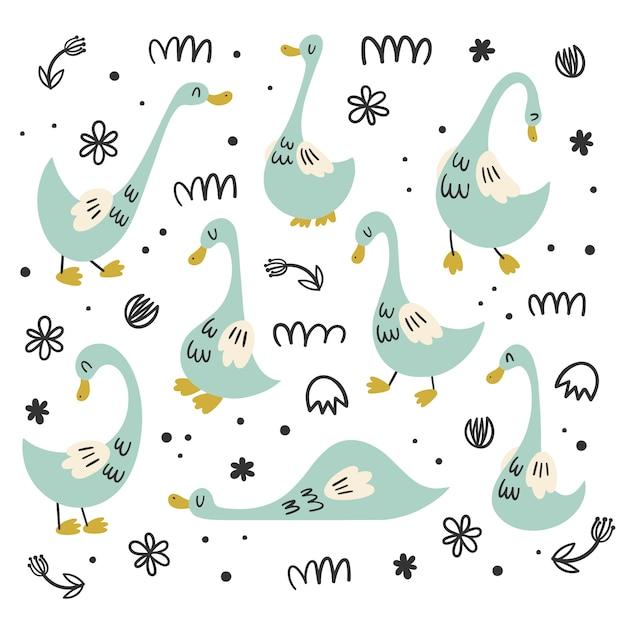 Ensemble de vecteur d'isolats avec des oies, des canards. styles de plat, dessin animé, doodle. caractère oiseau Vecteur Premium