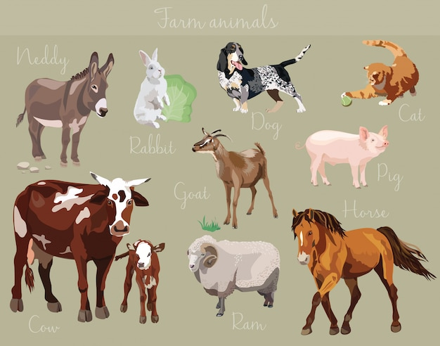Ensemble de vecteurs de différents animaux de la ferme Vecteur Premium