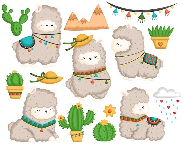 Un ensemble de vecteurs de lama mignon et de nombreux cactus Vecteur Premium