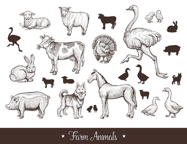 Ensemble vintage d'animaux de ferme Vecteur gratuit