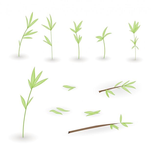 Ensembles de brindilles d'arbres à feuilles Vecteur Premium