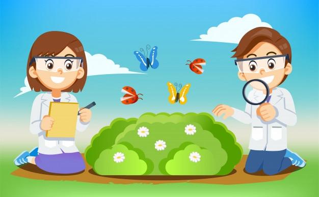 Environnement et biologie science expérimenter le cours pour enfants. Vecteur Premium