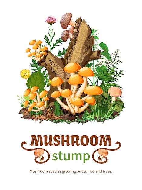 Espèces de champignons sauvages poussant sur une souche Vecteur gratuit