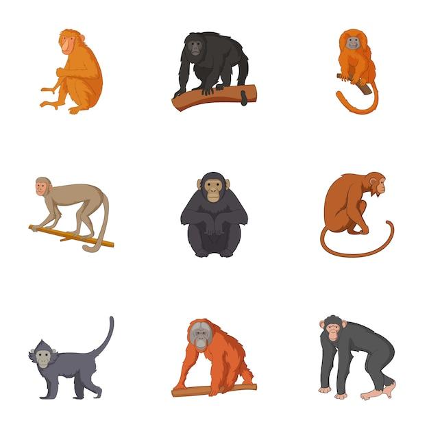 Espèces de chimpanzé icônes définies, style de bande dessinée Vecteur Premium