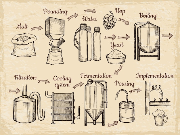 Étapes de production de bière. brasserie dessiné à la main Vecteur Premium