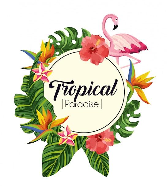 Étiquette avec des fleurs tropicales avec des feuilles exotiques Vecteur Premium