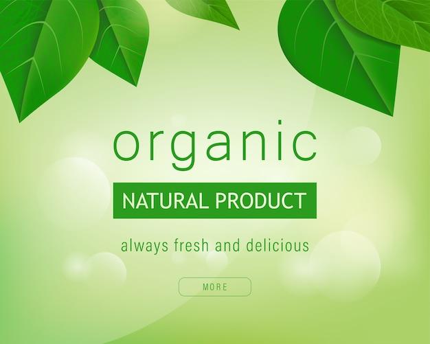 Étiquette organique fond vert naturel avec feuilles. Vecteur Premium