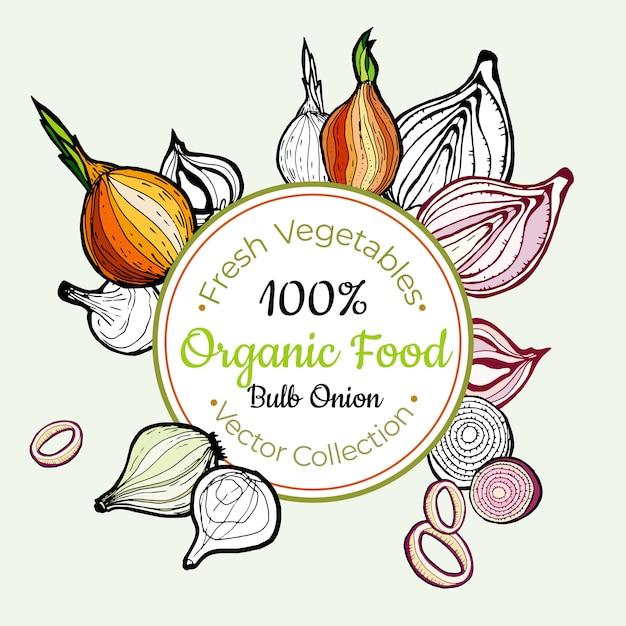 Étiquette vintage d'épicerie légumes oignon Vecteur Premium