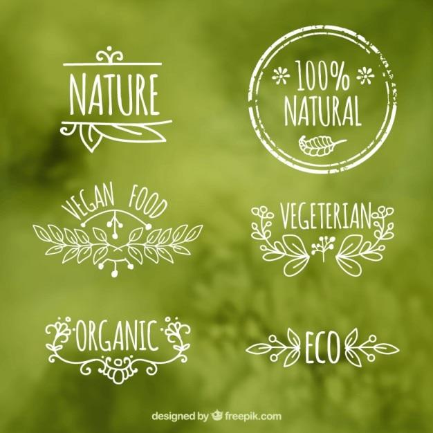 Les étiquettes des aliments écologiques Vecteur gratuit