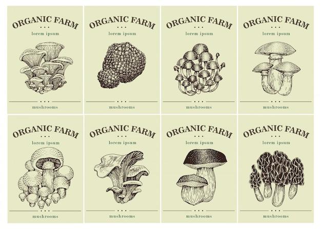 Étiquettes avec divers champignons. Vecteur Premium