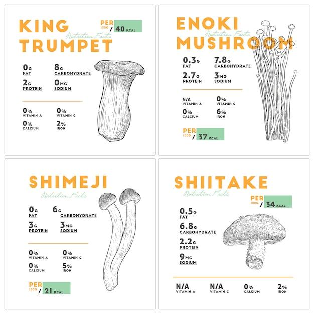 Fait de la nutrition du champignon Vecteur Premium