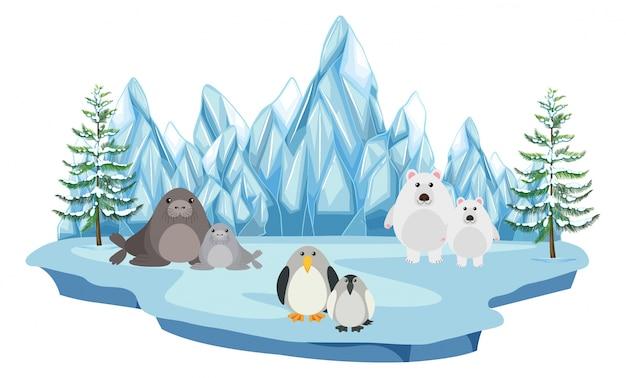 La faune dans la terre arctique Vecteur Premium