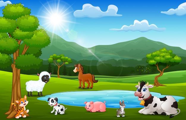Ferme d'animaux heureux jouant à côté de petits étangs avec un paysage de montagne Vecteur Premium