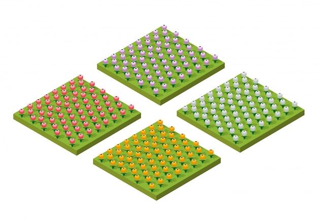 Ferme rustique isométrique Vecteur Premium