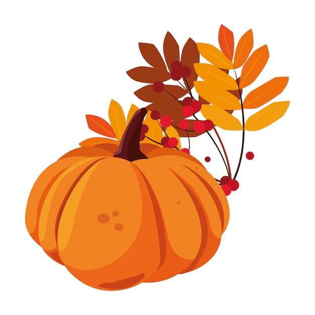 Feuillage de citrouille heureux saison d'automne plat Vecteur Premium
