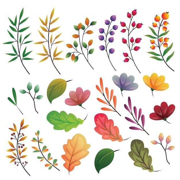 Feuilles d'automne collection d'éléments de couleur mis en illustration Vecteur Premium