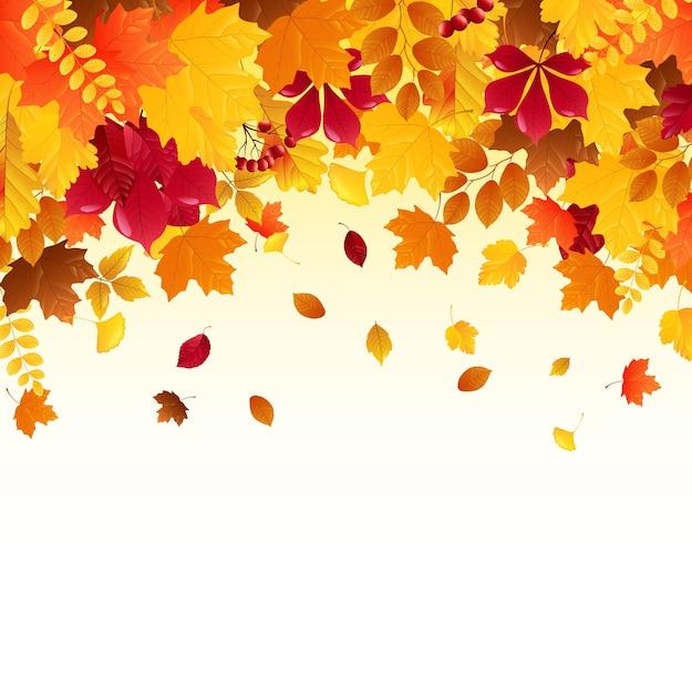 Feuilles d'automne tombant Vecteur Premium