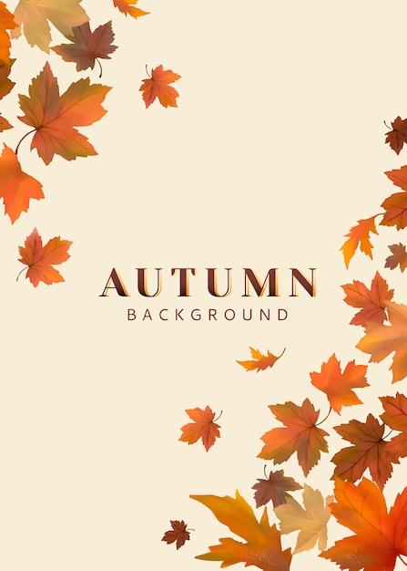 Feuilles d'automne Vecteur gratuit