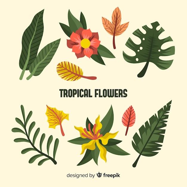 Feuilles et fleurs tropicales plates Vecteur gratuit