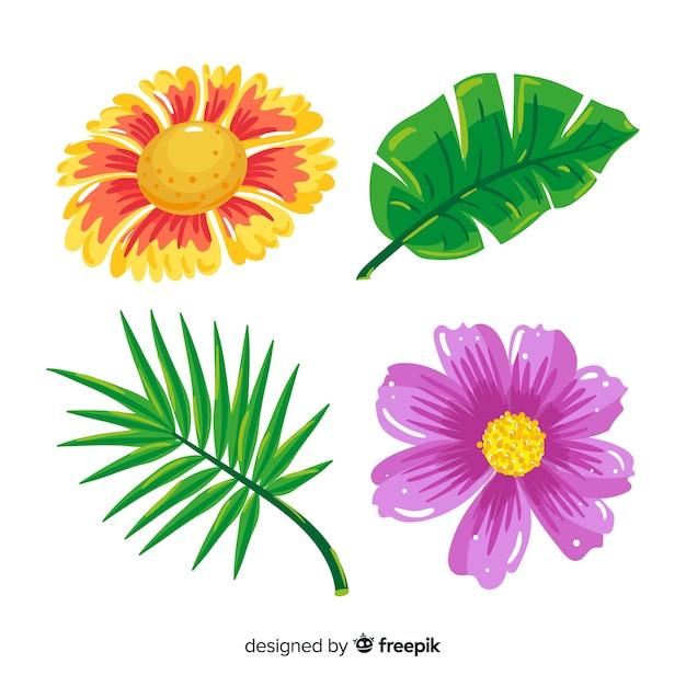 Feuilles et fleurs tropicales Vecteur gratuit