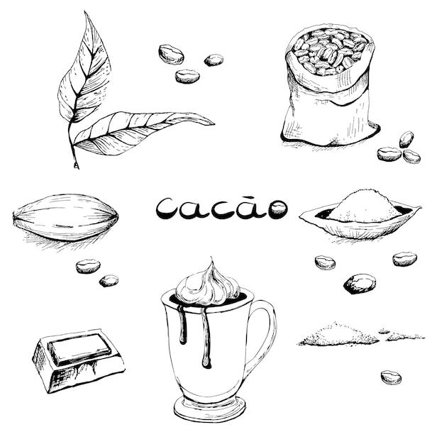 Feuilles, Fruits, Haricots, Poudre De Cacao, Un Verre Avec Une Boisson, Un Morceau De Chocolat. Vecteur Premium