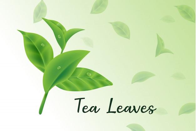 Feuilles de thé vert frais vecteur réaliste 3d, motif feuilles de thé Vecteur Premium