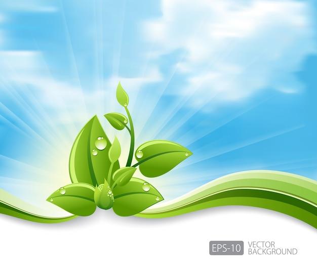 Feuilles De Vecteur Eco Et Vague Verte Vecteur Premium