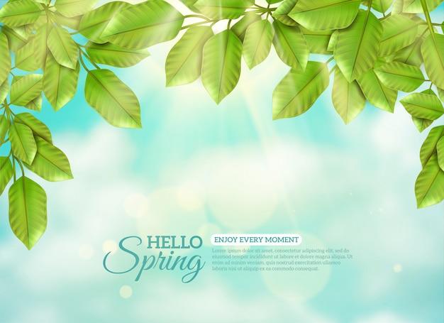 Feuilles Vertes En Rayons De Printemps Soleil Vecteur gratuit
