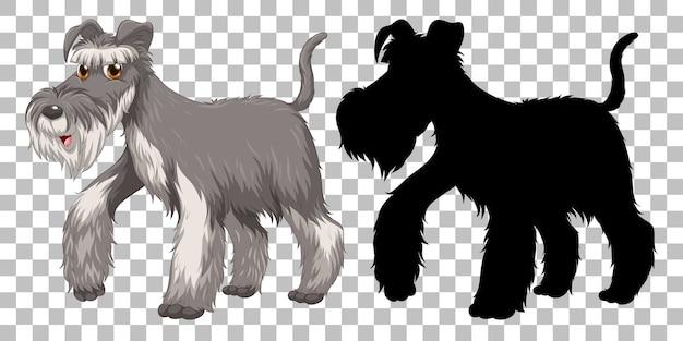 Fil Mignon Fox Terrier Et Sa Silhouette Sur Fond Transparent Vecteur gratuit