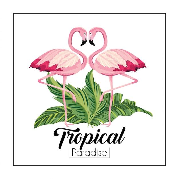 Flamants roses couple d'animaux avec des feuilles tropicales Vecteur Premium