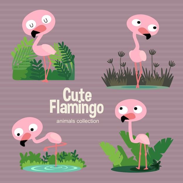 Flamingo mignon Vecteur Premium