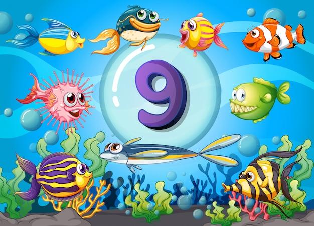 Flashcard numéro neuf avec neuf poissons sous l'eau Vecteur Premium