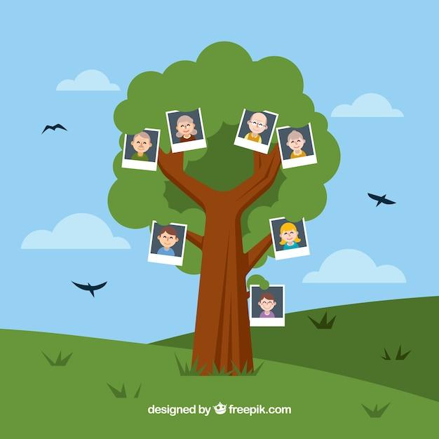 Flat arbre avec des oiseaux décoratifs Vecteur gratuit