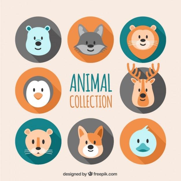 flat t tes d 39 animaux collection t l charger des vecteurs gratuitement. Black Bedroom Furniture Sets. Home Design Ideas