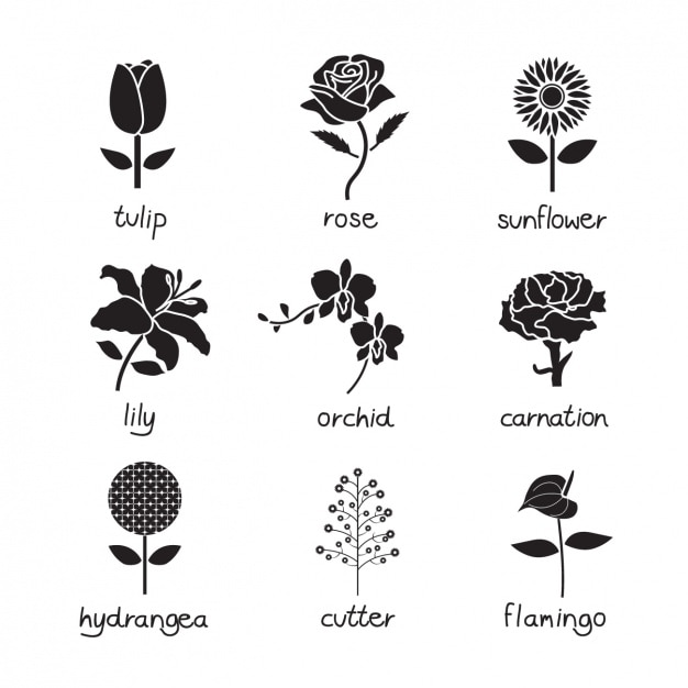 Fleur icônes collection Vecteur gratuit