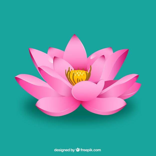 Fleur de lotus rose Vecteur gratuit