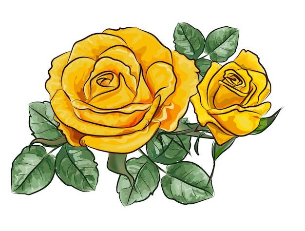 Fleur Rose Jaune Vecteur Premium