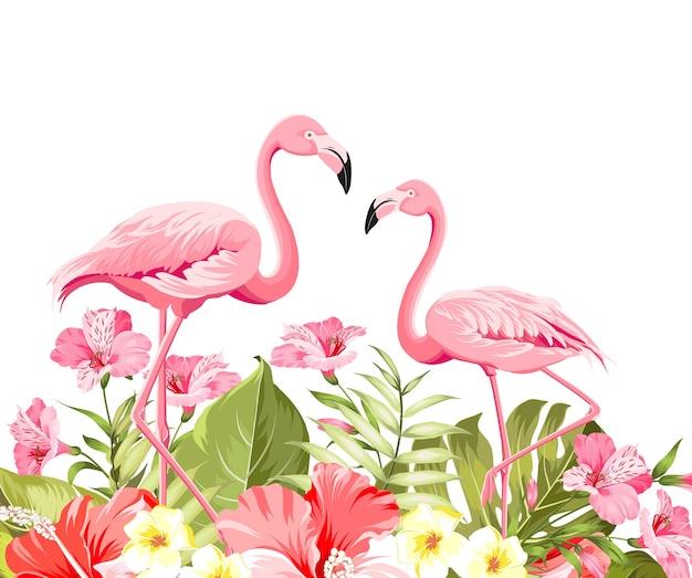 Fleur Tropicale Et Flamants Roses Sur Fond Blanc. Illustration Vectorielle. Vecteur gratuit