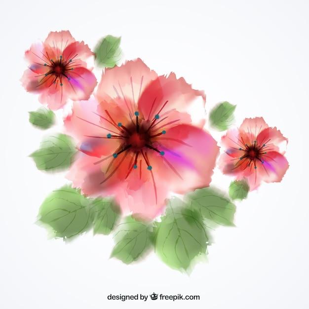 Fleurs aquarelle t l charger des vecteurs gratuitement for Aquarelle fleurs livraison gratuite