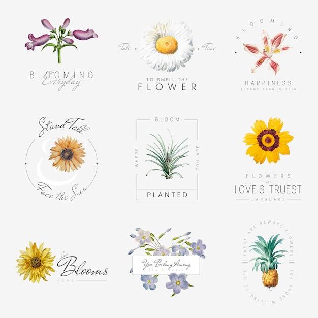 Fleurs Avec Des Citations Vecteur gratuit