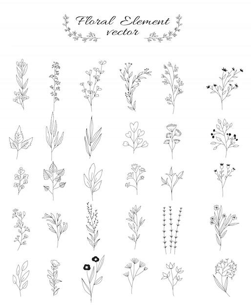 Fleurs et feuilles ensemble pour mariage, magasin de fleurs, style dessiné à la main Vecteur Premium